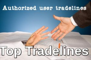 Authorized User Tradelines For Sale